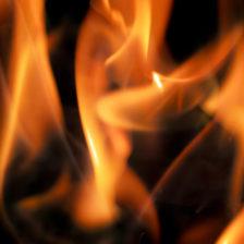 燃える闘魂